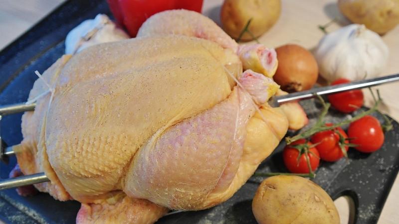 União Europeia proíbe importação de aves de 20 frigoríficos do Brasil