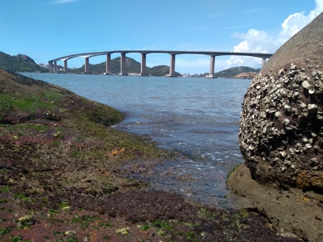 Corpo foi encontrado na região da Ilha do Boi, em Vitória