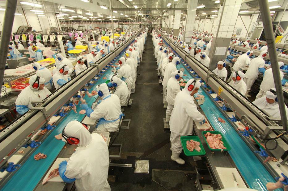 Ministério da Agricultura decidiu interromper a produção e certificação sanitária dos produtos de aves da BRF exportados do Brasil para União Europeia. Crédito: Divulgação