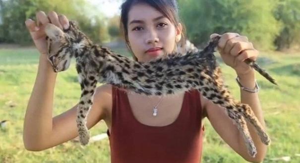 Ah Lin Tuch e um gato ameaçado de extinção