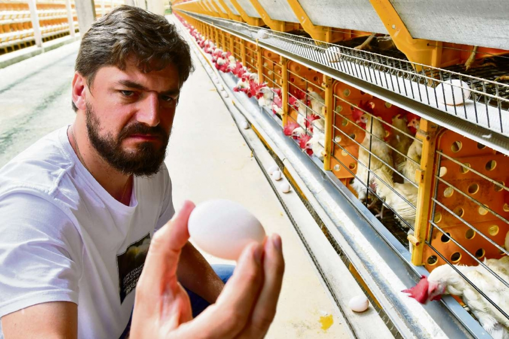 Carlos Berger é avicultor em Santa Maria de Jetibá. Com a falta de alimentação, 5 mil aves morreram. Crédito:                Bernardo Coutinho