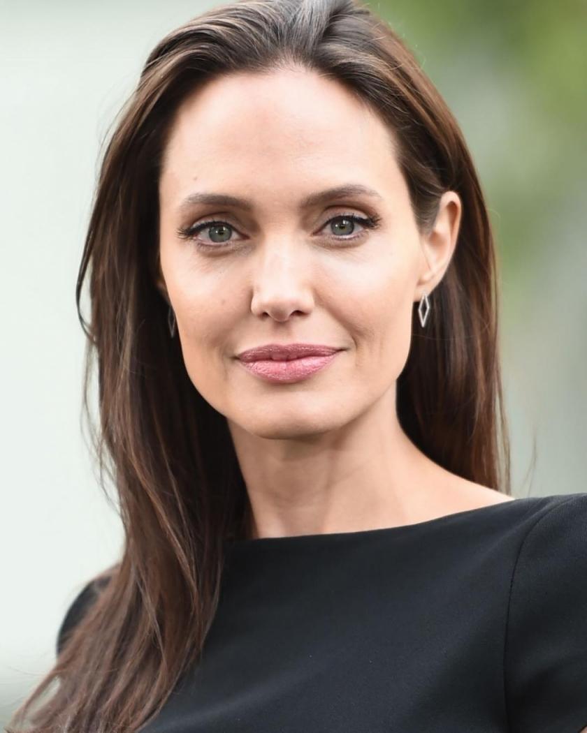 Angelina Jolie vai deixar herança milionária só para filho ... анджелина джоли