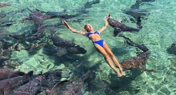 Estudante é mordida por tubarão enquanto posava para foto