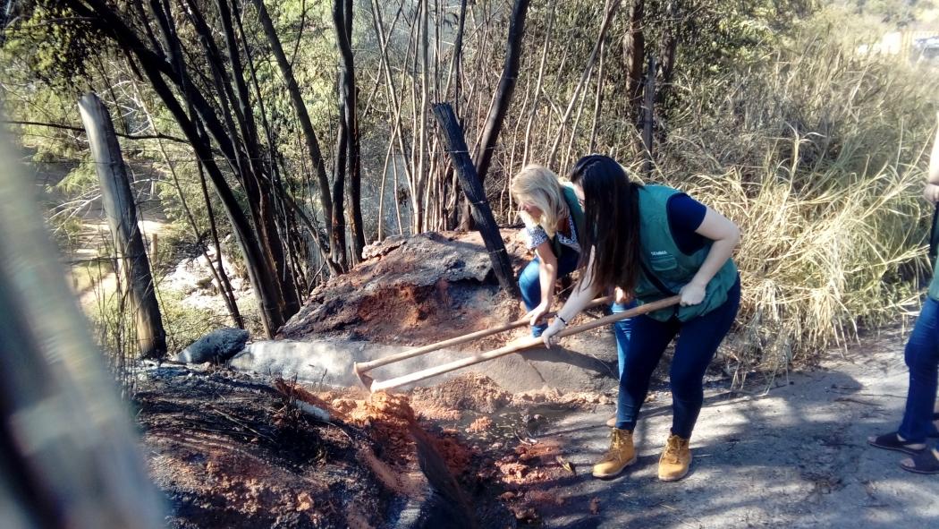 Equipe da Secretaria de Meio Ambiente  estava tentando diminuir o impacto na área. Crédito: Geizy Gomes