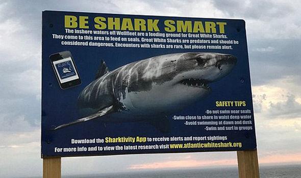 Placa alertando para o risco de ataque de tubarões no local. Crédito: WBZ-TV)
