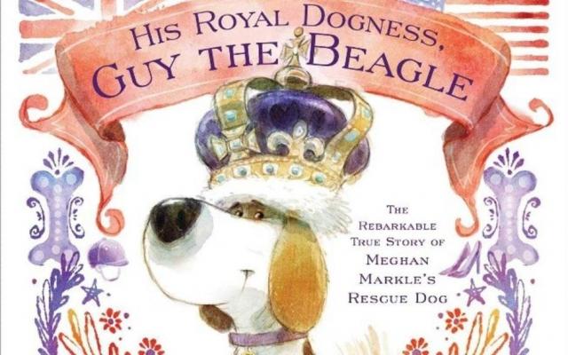 Livro 'His Royal Dogness, Guy the Beagle: The Rebarkable True Story of Meghan Markles Rescue Dog' conta história do cachorro da duquesa de Sussex. Crédito: Reprodução
