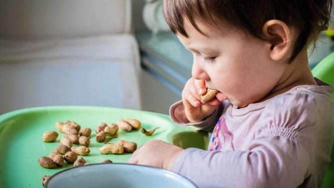 Alergia a amendoim: estudo afirma que é possível desenvolver tolerância à proteína, de forma a evitar reações alérgicas violentas . Crédito:  Infoglobo