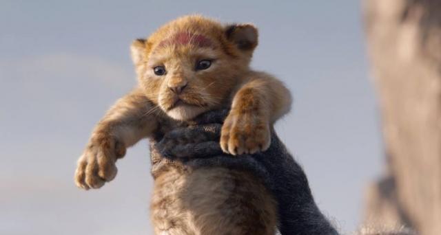 Live-action de 'O Rei Leão' estreia em julho de 2019. Crédito: Twitter/Disney