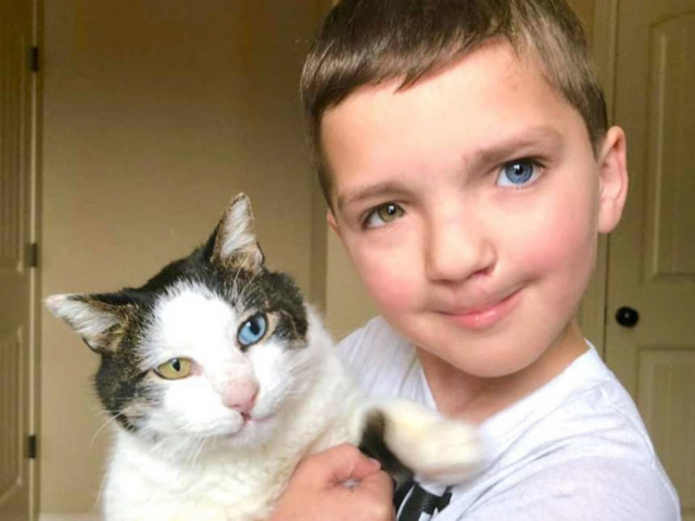 O garoto Madden, de sete anos, e seu gatinho Moon