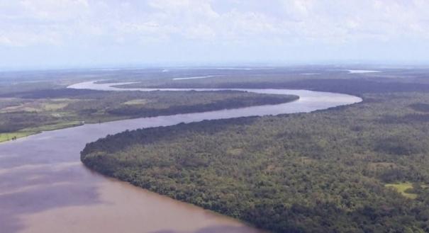 Amazônia. Crédito: Reprodução