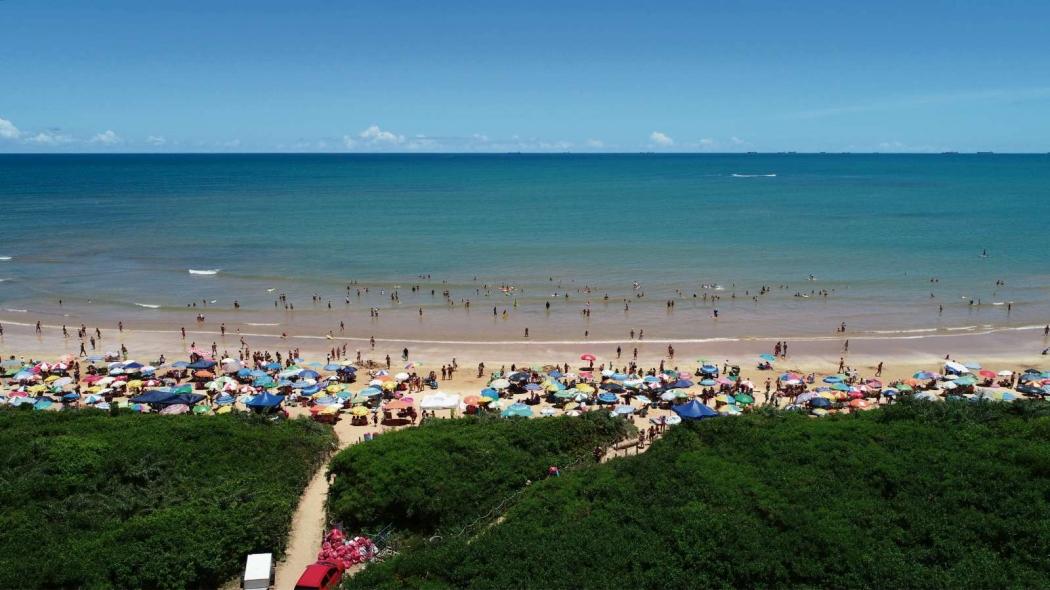 Em Manguinhos, Serra, vegetação ganha destaque no contraste com o azul do mar. Crédito: Secundo Rezende/Drone