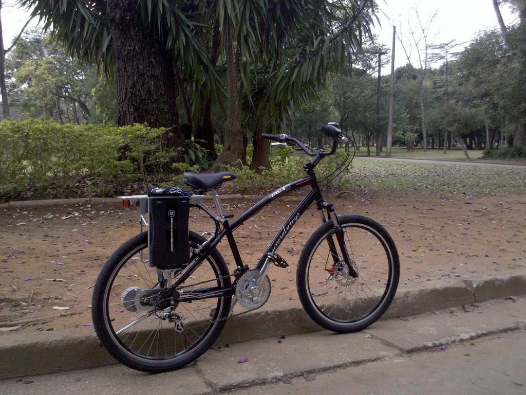 Um bicicleta elétrica, na versão mais barata, custa em torno de R$ 2 mil. Crédito: Divulgação